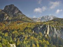 Vallei Bujaruelo, dichtbij Nationaal Park van Ordesa royalty-vrije stock afbeelding