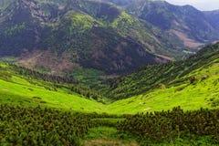 Vallei in de bergen Stock Fotografie