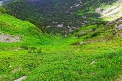 Vallei in de bergen Stock Foto's