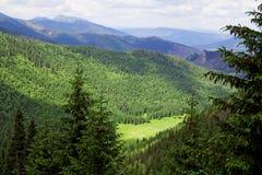 Vallei in de bergen Royalty-vrije Stock Foto