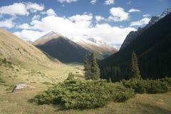 Vallei in de bergen van Kyrgyzstan Stock Afbeelding