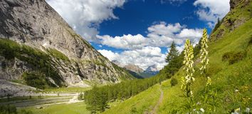 Vallei in Dolomiet, Italië royalty-vrije stock foto's