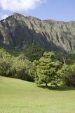 Vallei door de Bergen Ko'olau op Oahu royalty-vrije stock afbeeldingen