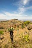 Vallei en Bergen in Mlilwane-Wildreservaat, Swasiland Royalty-vrije Stock Foto
