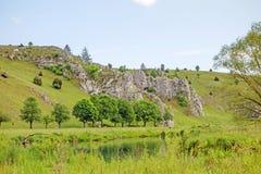 Vallei Eselsburger Tal - groene weide stock afbeeldingen