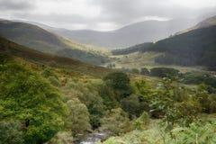 Vallei in het bospark van Galloway Stock Fotografie