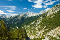 Vallei in het Triglav Nationale Park, Slovenië Stock Foto's