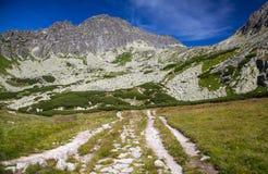 Vallei in Hoge Tatras, Slowakije Royalty-vrije Stock Afbeeldingen