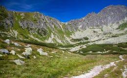 Vallei in Hoge Tatras, Slowakije Royalty-vrije Stock Foto
