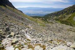 Vallei in Hoge Tatras, Slowakije Stock Foto