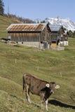 In vallei Medel Royalty-vrije Stock Afbeeldingen
