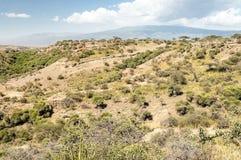 Vallei in Tanzania Royalty-vrije Stock Afbeelding