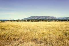 Vallei in Tanzania Royalty-vrije Stock Fotografie