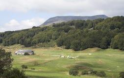 Vallei tussen heuvels en bergen royalty-vrije stock foto's