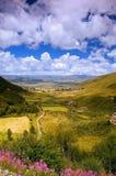 Vallei van Bloem in Tibet Stock Afbeeldingen