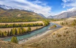 Vallei van de bergrivier op een zonnige dag Stock Afbeelding