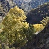 Vallei van de rivier Genil in de weg van Sierra Nevada royalty-vrije stock foto