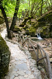 Vallei van de Vlinders, Rhodos, Griekenland Stock Fotografie
