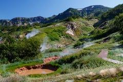 Vallei van Geisers kamchatka royalty-vrije stock foto's