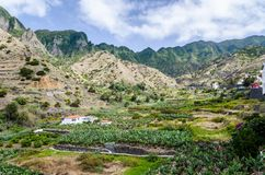 Vallei van Hermigua in het Eiland van La Gomera, Spanje Stock Foto