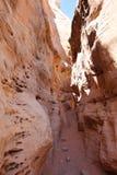 Vallei van het Park van de Brandstaat in Nevada, de V.S. stock foto