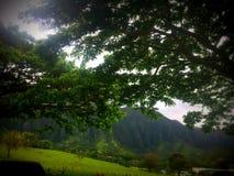 Vallei van het Tempels vreedzame landschap van bergketen door bomen Royalty-vrije Stock Afbeeldingen