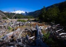 Vallei van rivier Cauquenes en berg Tronador Stock Fotografie