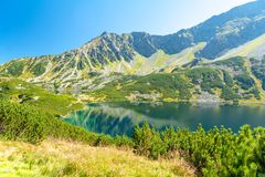 Vallei van vijf vijvers in Tatra-bergen, Polen Stock Afbeeldingen