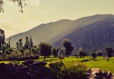 Valleien van Himalayagebergte stock foto's