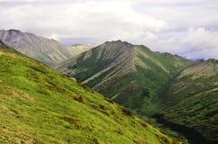 Valles antiguos de Alaska Imágenes de archivo libres de regalías