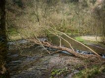 Vallées de Derbyshire Photo stock