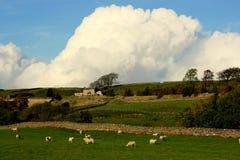 Valles de Yorkshire Fotografía de archivo