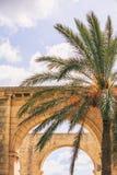 Valletta, Malta, Górni Barrakka ogródy Kamieni łuki i drzewko palmowe, chmurny niebieskie niebo, obrazy royalty free