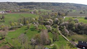 Vallevagen Or Valle Area Famous For Thousands Of Wild Cherry Blossom Tree, Sweden, Aerial