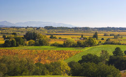 Valley. Autumn strikes California wine country Royalty Free Stock Images