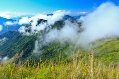 Valley. In the morning at the north of Thailand Royalty Free Stock Photos