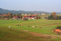 Valley. Austrian valley in the fall Royalty Free Stock Images