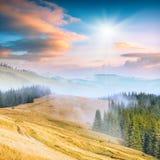 Прикарпатская гора valley_5 Стоковая Фотография
