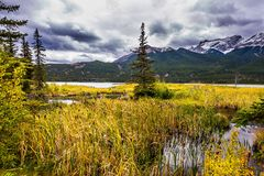 The valley along the Pocahontas road. Miirror - lake. The cloudy sky is reflected in the smooth water surface. The lakes, firs and royalty free stock photo