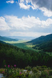 Valley of Altay Stock Image