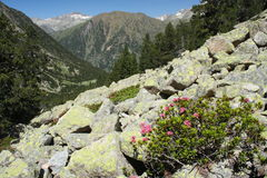 Valley in Aragon Pyrenees Royalty Free Stock Photography