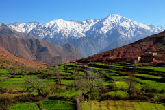 Mountains snow green valley. Snow-covered mountains behind a green valley in the Atlas mountains, Morocco Stock Image