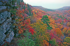 Valley in Autumn Color. Limestone bluffs tower above a colorful ozark valley in the fall royalty free stock image