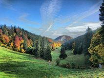 Valley in autumn. Small valley in the swiss Jura nearly la chaux de fonds Royalty Free Stock Photo