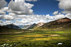 Valley. The beautiful valley in Tibet stock images