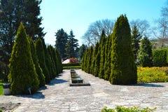 The valley of the Botanical Garden Stock Photo