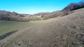 Valley Bottom. Aerial footage moving along near the bottom of a green valley stock video