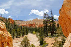 Valley in the Bryce Canyon National Park Stock Photo