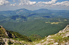 A valley in Bucegi Mountains Royalty Free Stock Images