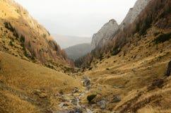 Valley in Bucegi Mountains Stock Photography